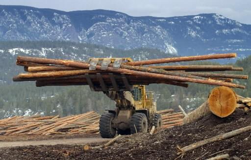 La demande pour le bois d'oeuvre demeure faible... (Photo: Bloomberg)