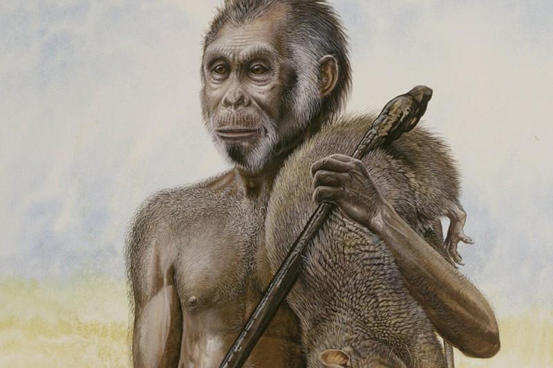 De petite taille, environ 1m, l'Homo floresiensis qui... (Photo: archives AFP)