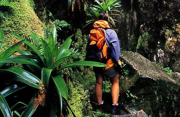 Le tourisme vert a la cote et les voyagistes l'ont compris.... (Photo: La Presse)