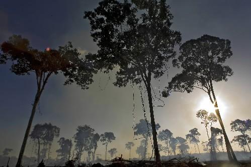 L'activité humaine dans l'Amazonie n'a... (Photo: Patrick Sanfaçon, La Presse)