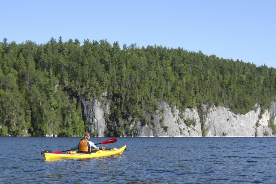 Pacific Arc Ressources, firme de Vancouver, a embauché... (Photo: Marie Tison, La Presse)