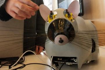 Le robot Psikharpax... (Photo: AFP)