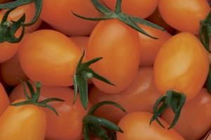 Voici un classique d'été, une salade de tomates... (Photo: Archives La Presse)