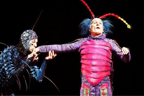 Le Cirque du Soleil - avec Ovo -... (Le Soleil, Yan Doublet)