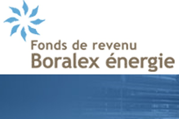 Une société d'investissement a mis ses menaces à exécution... (Logo Boralex)