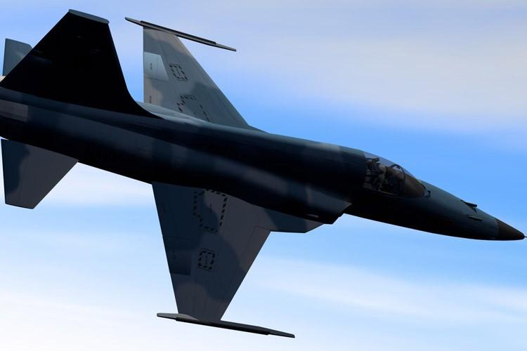 Un avion de combat F-5....