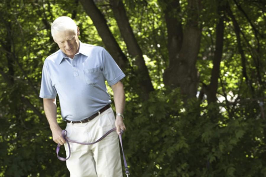 Quand le cerveau vieillit, les régions responsables... (Photothèque La Presse)