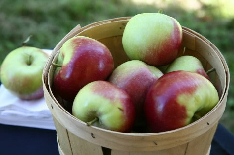 Des pommes de Rougemont... (Photo: Archives La Presse)