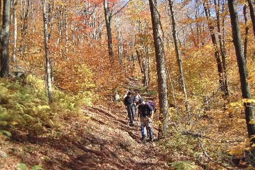 Cet automne, Sutton propose aux amants de la... (Photo: fournie par Mont-Sutton)