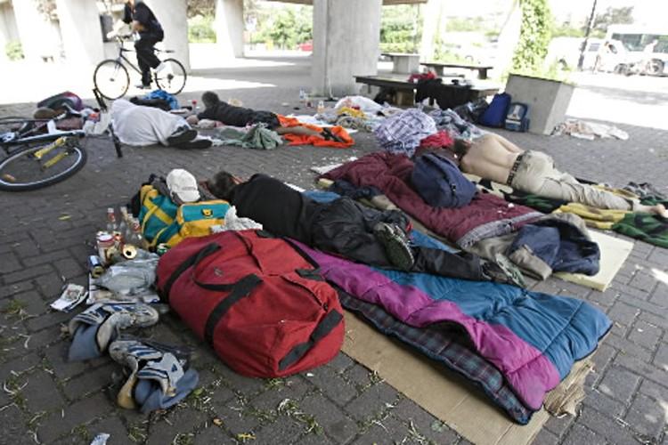 Vingt ans après la création du «Refuge des... (Photo: François Roy, La Presse)