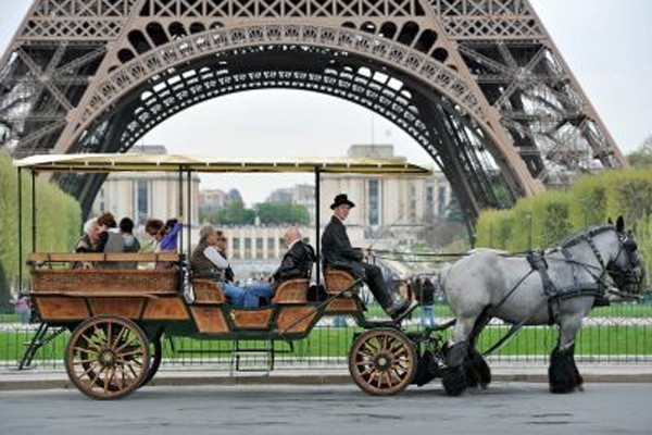 Tondeuse à gazon, débardeur, mini-bus scolaire ou benne à... (Photo: AFP)