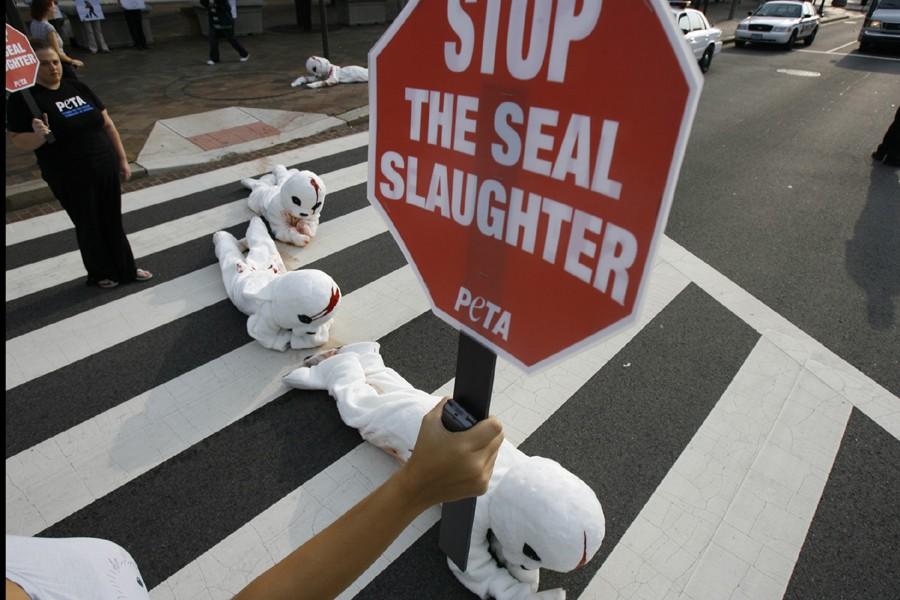 Des activistes membres de PETA ont manifesté contre... (Photo: AP)