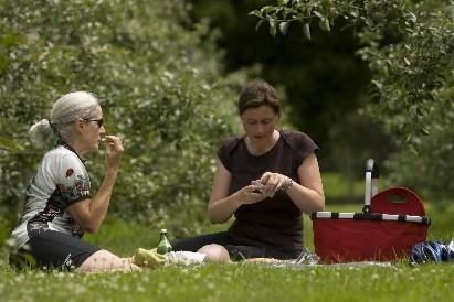 Pique-Nique à la Face cachée de la pomme,... (Photo: David Boily, La Presse)