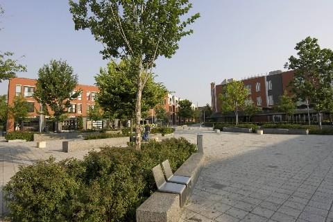 La place Simon-Valois contribue beaucoup à la revitalisation... (Photo: David Boily, La Presse)