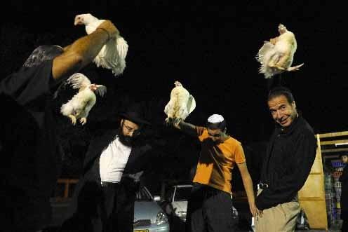 Des juifs orthodoxes agitent des poulets au-dessus de... (Photo AFP)
