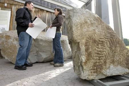 La nouvelle exposition Des empreintes plus grandes que... (Photo: Alain Roberge, La Presse)
