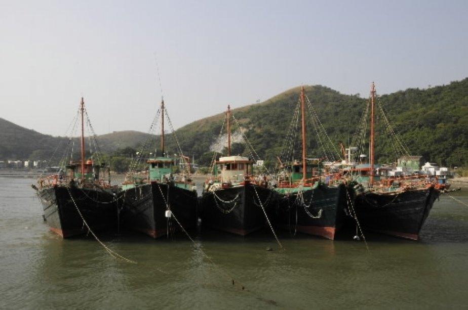 Les bateaux au repos dans le village de Tai O. | 1 mars 2011