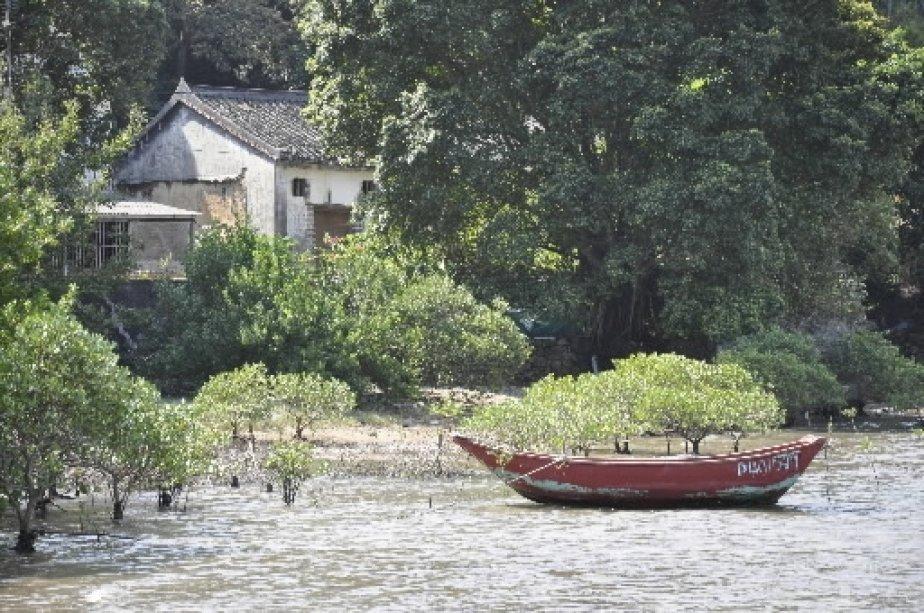 Le sentier croise des plantations de mangroves et quelques rares habitations. | 1 mars 2011