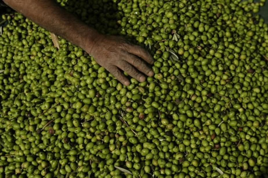 L'huile d'olive occupe la plus grande part de... (Photo: archives AP)
