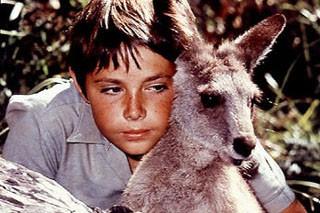 Le créateur de la série télévisée australienne Skippy le kangourou, l'une des...
