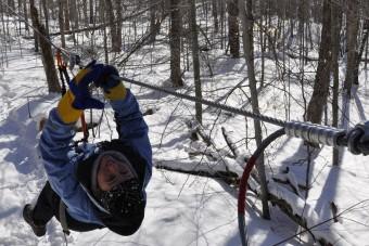 Notre journaliste a essayé la tyrolienne à Acrobranche,... (Photo: Patrick Daigle, collaboration spéciale)