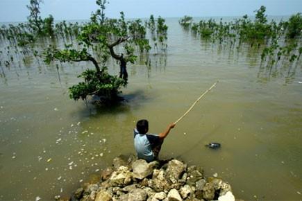 Le directeur des Eaux et Forêts en Sierra Leone, Ahmed Mansaray,... (Photo: AFP)