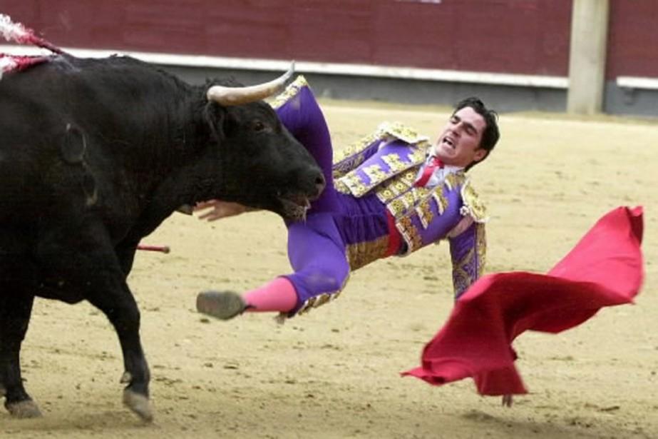 Le Parlement catalan étudie la possibilité d'interdire les... (Photo: AP)