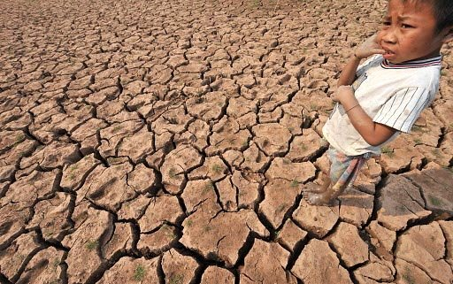 Le fils d'un fermier déambule sur le champ... (Photo: AFP)