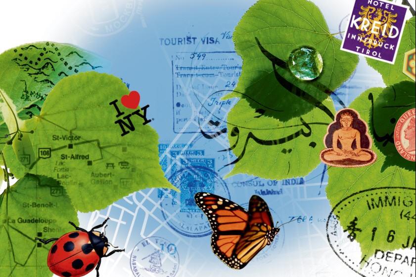Le tourisme responsable a le vent... (Illustrations: Philippe Tardif, La Presse)