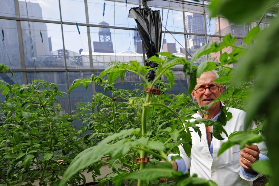 Eli Zabar, patron de la «Vinegar Factory», cultive... (Photo: AFP)