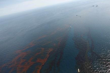 La nappe d'hydrocarbures atteignait mercredi soir 965 km... (Photo: AP)
