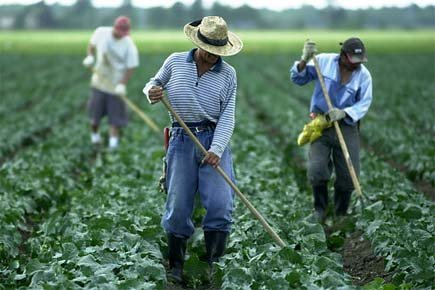 En 2010, on comptait plus de 6000 travailleurs... (Photo La Presse Martin Chamberland)