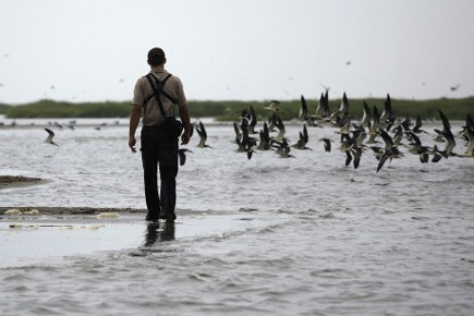 Un membre des service américains de Poisson et... (Photo Reuters)