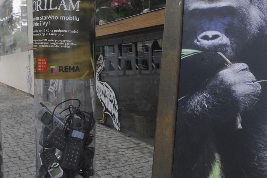 Un tube rempli de cellulaires à l'extérieur du... (Photo: AFP)