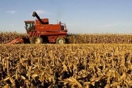 L'assurance stabilisation des revenus agricoles permet de soutenir... (Photo d'archives Robert Skinner, La Presse)