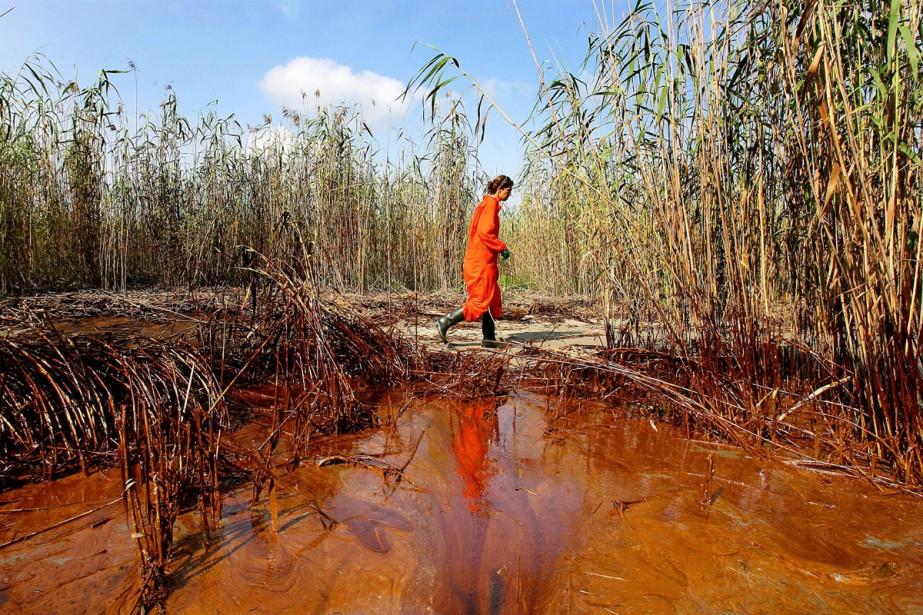 Du pétrole lourd a commencé à atteindre les... (Photo: AFP)