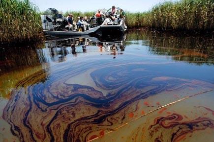 Labyrinthe de canaux et d'étangs, les bayous de... (Photo: AP)