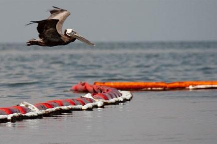 Les autorités américaines estiment que la fuite de brut dans le... (Photo: AFP)