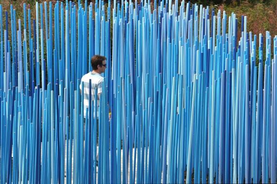 Créé en 2000, le Jardin des bâtons bleus,... (Photo Louise Tanguay, Jardins de Métis)