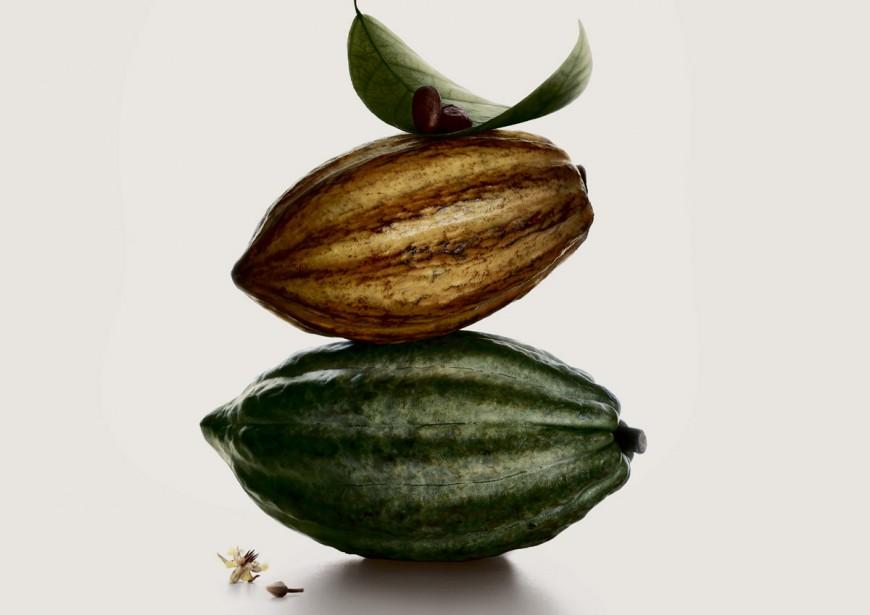 Des fèves de cacao... (Photo: fournie par Valhrona)