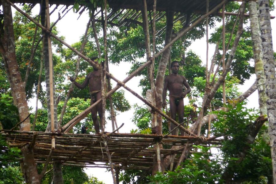 Les Korowai ont établi leurs maisons en bois... (Photo: AFP)