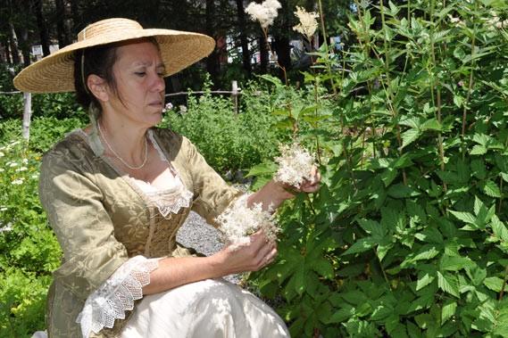 Hélène Mathieu cultive une cinquantaine de plantes médicinales... (Photos collaboration spéciale, Johanne Martin)
