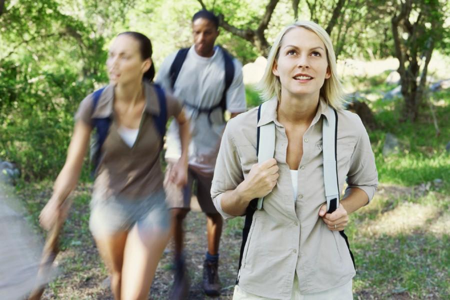 Une promenade en forêt ou au parc serait un excellent... (Photothèque La Presse)