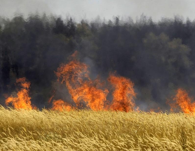 Depuis plusieurs jours, les incendies de fôret font... (PHOTO: MIkHAiL METZEL, AP)