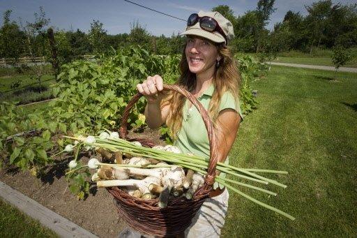 L'horticultrice Marie-Claude Riel et sa récolte d'ail, dans un champ de Dunham.   30 mars 2011