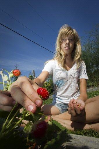 Juliette, la fille du cuisinier, fête ses 13 ans et cueille une fraise dans le potager de Dunham.   30 mars 2011