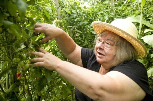Regardez-moi ces tomates! semble dire Lorraine.   30 mars 2011