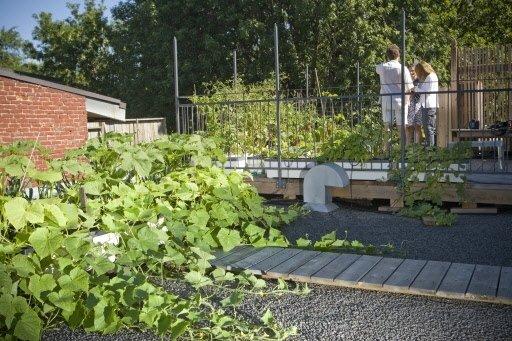 Sur la partie du toit sans terrasse, Pascale et Philippe...   2011-03-30 00:00:00.000