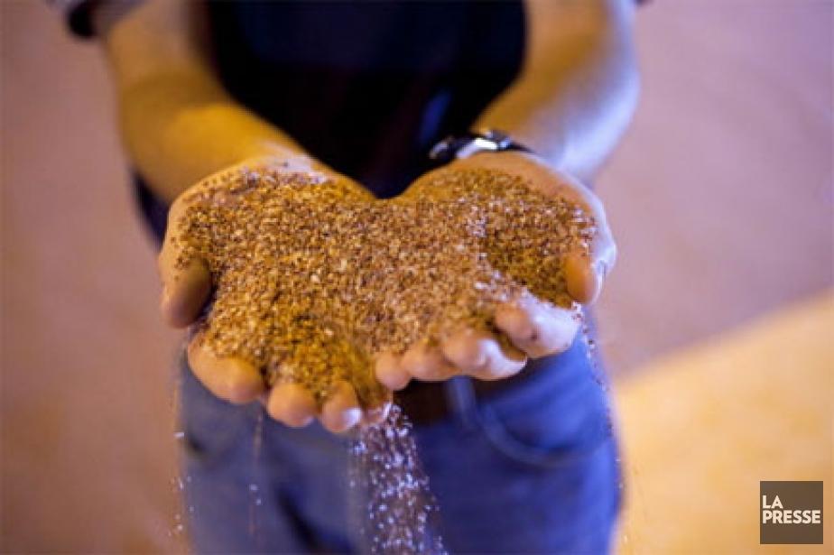 Au Canada, les chiffres de Potash Corp. ont... (Photo: Reuters)