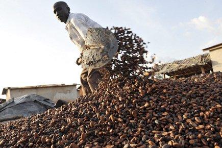 La Côte d'Ivoire est le premier exportateur de... (Photo: Sia Kambou, AFP)